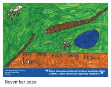Winning entry Nov 2020 - Banjo Thompson, Pittsworth State School